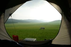 Mongolia pic_stock